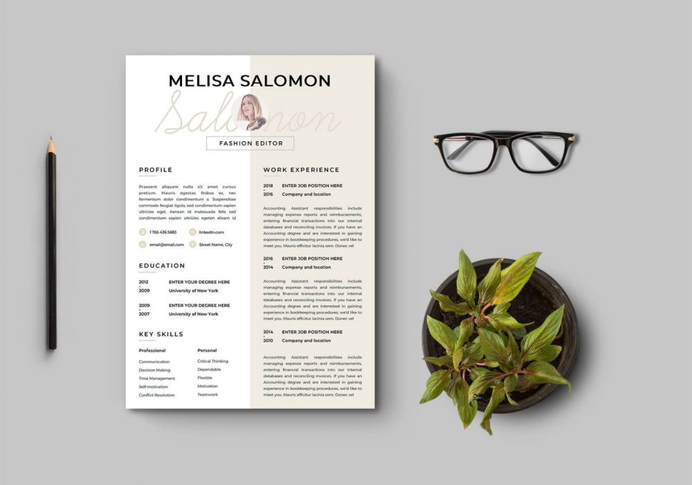 Clean And Modern Resume Template Free Download Setresume