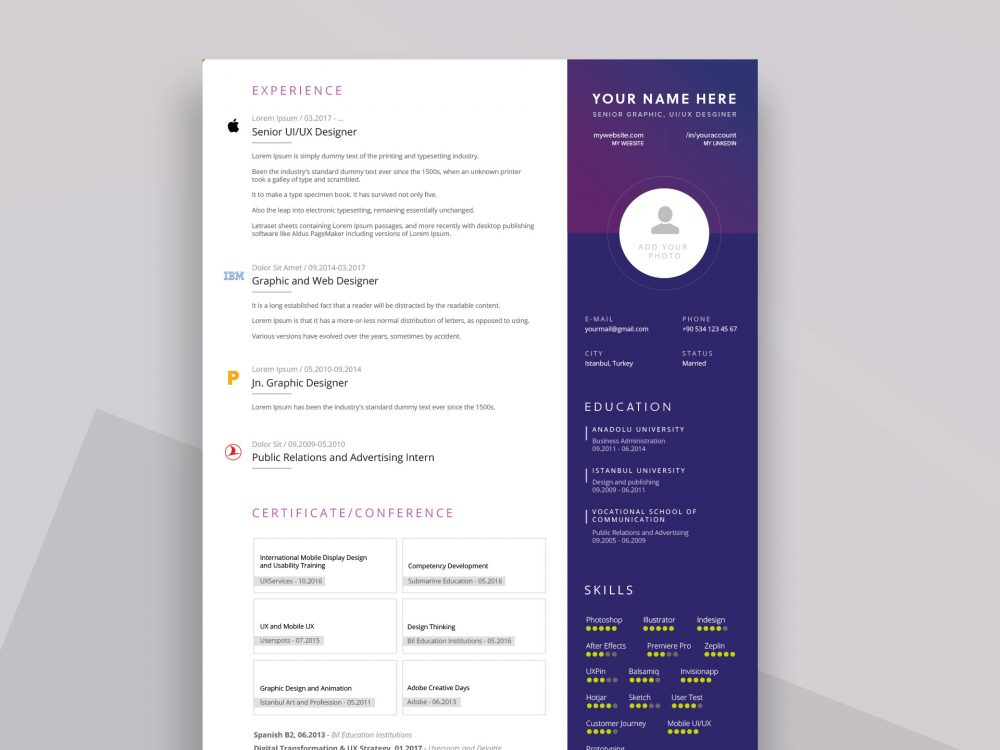 PPT Resume Template